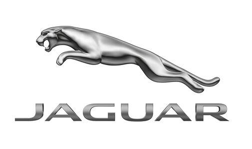 Jaguar Logo (ab 2012)